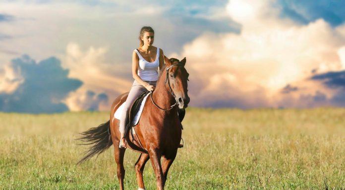 equitazione fa bene