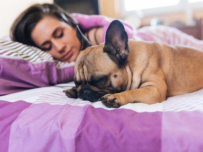 Dormire con il cane: è un bene o un male?